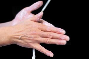 画像:職人の手